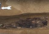 На Ямале нашли захоронения на средневековом некрополе