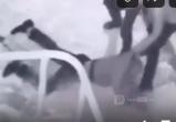 В Ноябрьске киллеры похитили человека, но у них ничего не получилось (ВИДЕО)