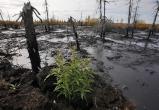 «Дочка» «Газпрома» поплатилась за разлив нефти