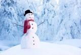 Пасмурно и снег: прогноз погоды на 11 декабря