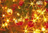 Елочка, гори! В Новом Уренгое скоро зажгут огни на городской елке в присутствии 13 Дедов Морозов