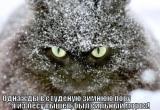 Недетские морозы: прогноз погоды на 8 января