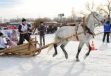 Работники сельского хозяйства Ямала готовятся к Всероссийским зимним сельским спортивным играм