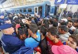 За 2018 год с Ямала депортировали 156 нелегалов