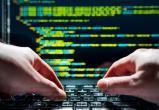 «Коммерсантъ» рассказал о новом виде мошенничества в Интернете