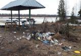 Делай, а не фотографируй: редакция НУР24 сама «разобралась» с кучей мусора от новоуренгойцев (ФОТО, ВИДЕО)