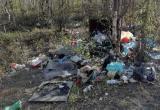 «И ведь люди приезжают сюда на «крутых тачках»: новоуренгойка нашла одну захламленную зону отдыха (ФОТО)