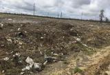 «Снег растаявший - он... мусор»: новоуренгойцы жалуются, что УГАД тянет с очисткой полигона для снега (ФОТО)
