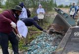 Сотрудники ООО «Газпром добыча Уренгой» позаботились о чистоте города (ФОТО)
