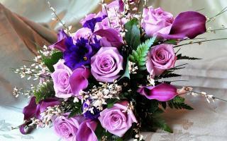 Букетик, Салон цветов