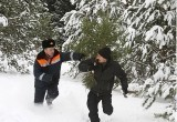 Елочная кампания на Ямале продлится до Нового года
