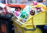 В России появится единая компания-оператор по обращению с мусором
