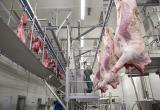 Прокуратура проверила, как проходит забой животных у новоуренгойских фермеров, и нашла нарушения