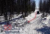 Слетел со снегохода в снег: сводка ДТП в округе за выходные (ФОТО)