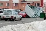 Порыв ветра сорвал «ракушку» с мусорных баков на автомобиль (ФОТО)