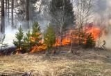 На Ямале объявлен пожароопасный сезон
