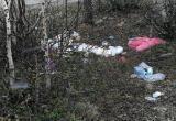 Кто оставил мусор: жители газовой столицы пытаются вычислить не убравших за собой отдыхающих (ФОТО)
