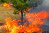 На Ямал идет жара: жителей предупреждают об опасности