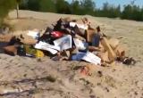 Новоуренгоец нашел зловонную гору мусора, а в Салехарде лиса пришла поесть с импровизированной свалки (ВИДЕО)