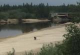 Новоуренгойский пляж стал источником дохода для людей с металлоискателями (ВИДЕО)