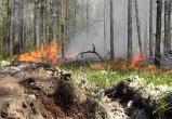 На Ямале вновь вспыхнули лесные пожары