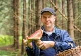 Мужчина пятидесяти лет с ведром белых грибов: аналитики описали типичного грибника (ОПРОС)