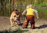 В Ныде собака без намордника набросилась на ребенка: суд оценил укус животного в 10 тысяч рублей