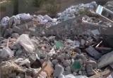 «Тут «Транснефть»! Тут дом строят, а тут - свалка! Деревья померли!»: жительницу Нового Уренгоя возмутила гора мусора