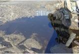 На дороге между Коротчаево и Тазовским найдена залитая нефтепродуктами земля (ФОТО)