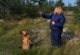 В Новом Уренгое живет собака, обученная быстро находить грибы в лесу (ФОТО)
