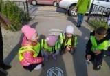 Дошколята и школьники Нового Уренгоя научат взрослых ПДД (ФОТО)