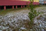 Его не было меньше трех месяцев: в Новом Уренгое выпал первый снег (ФОТО, ВИДЕО)