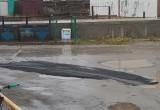«Какой щедрый кусок асфальта»: в Салехарде дорожники рассмешили жителей города (ФОТО)