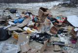 Вблизи Салехарда неизвестные устроили свалку: житель города обвиняет предпринимателей (ФОТО)