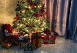 Редакция НУР24 выбрала самую красивую елку в Новом Уренгое (ФОТО)