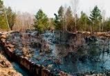 Компания «РН-Пурнефтегаз» заплатила за порчу ямальских земель больше 64 млн рублей