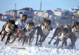 «День оленевода» и «Ямальская строганина» вошли в ТОП-200 событий страны
