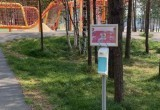 Дезинфицируем ручки: на улицах Ноябрьска установили бесплатные санитайзеры (ОПРОС)