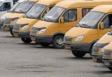 В Новом Уренгое могут запустить маршрутное такси (ОПРОС)